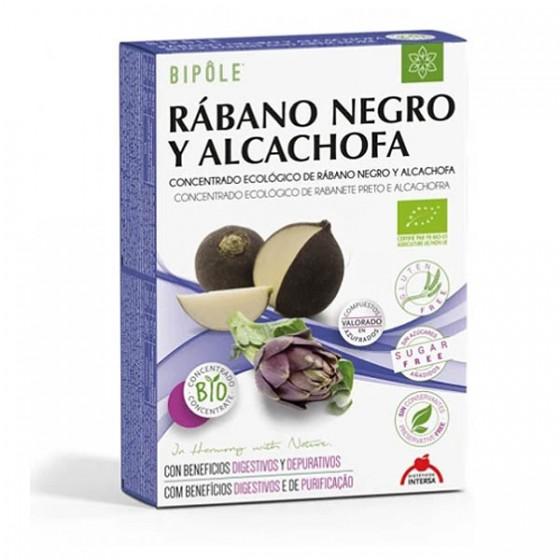 Rábano negro y alcachofa...
